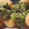 granddaddy purple strain, granddaddy purple for sale,Buy granddaddy purple