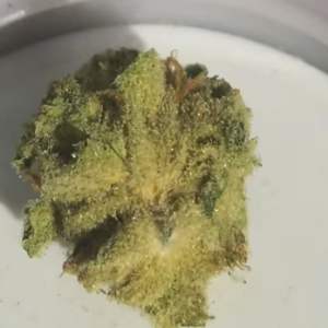 super lemon haze for sale