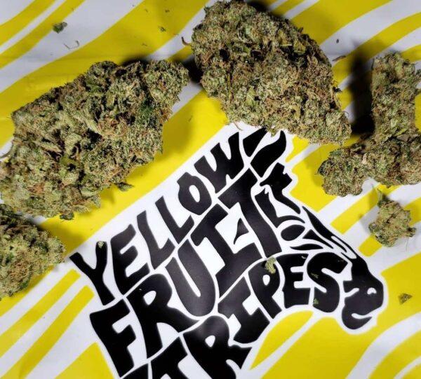 Buy yellow fruit stripes