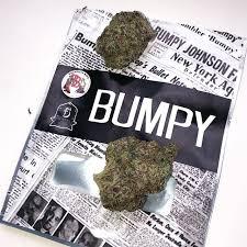 Buy Bumpy strain online