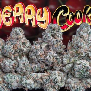 buy Cherry Cookies strain