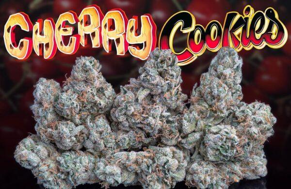 buy Cherry Cookies strain