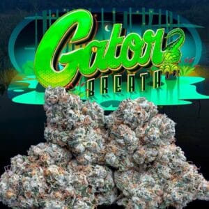 Buy Gator Breath strain