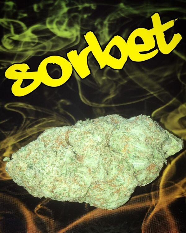 Buy Sorbet strain online