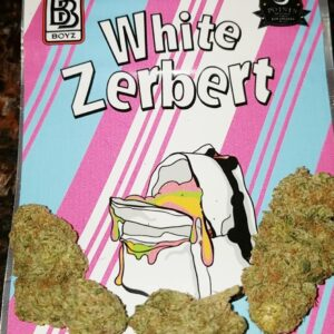 Buy White Zerbert strain