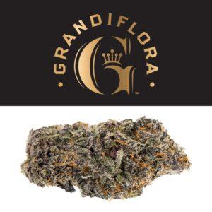 Grandiflora Strains