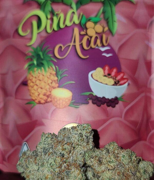 Buy grandiflora Piña Acai