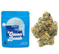 Buy Ocean Beach cookies