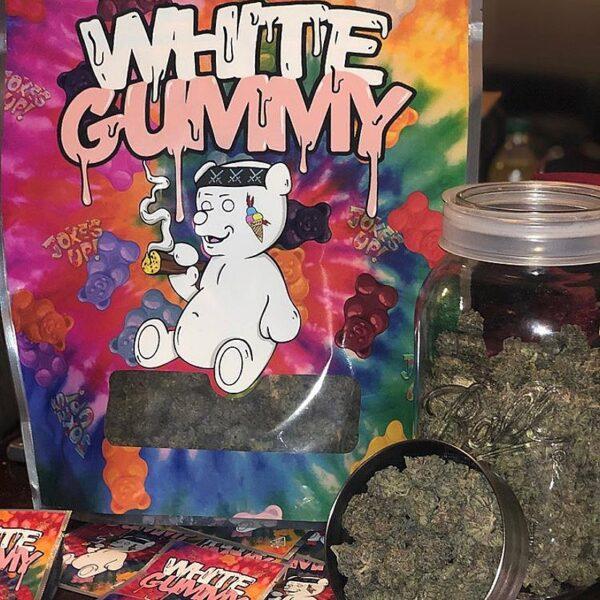 Buy White Gummy strain