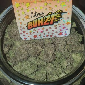 Buy Citrus Burzt strain