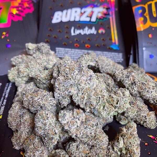 Buy Burzt limited strain