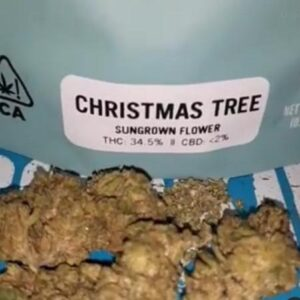 Buy Christmas Tree strain