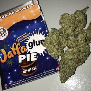 Buy Jaffa Glue Pie strain