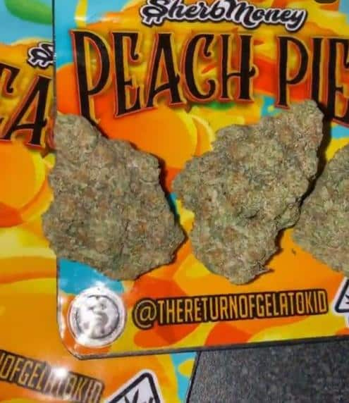 Buy peach pie strain