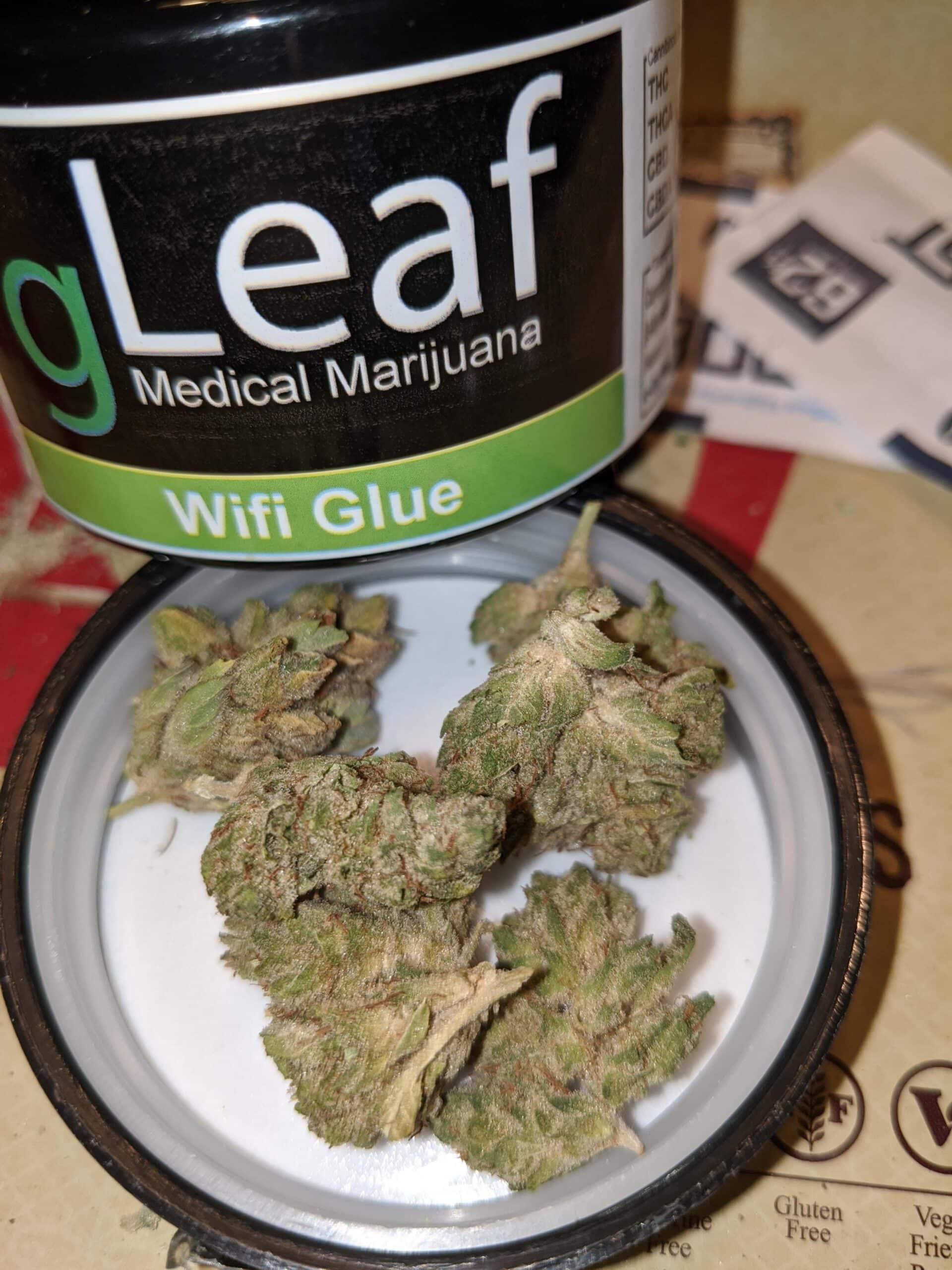 Buy Wifi Glue strain