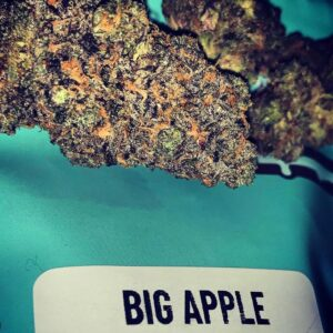 Buy Big Apple strain