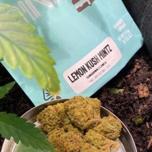Buy Lemon Kush Mintz strain
