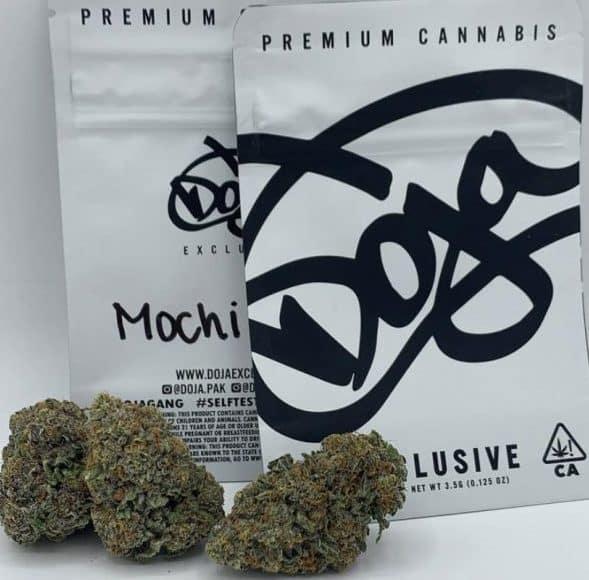 Buy Mochi strain Online