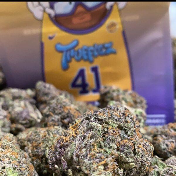 Buy Trufflez 41 strain
