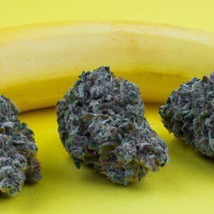 Buy Chiquita Banana strain
