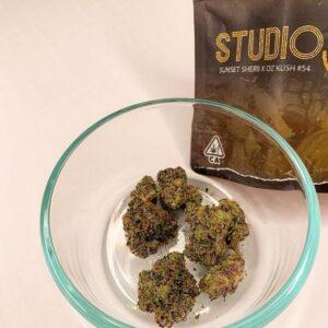 Studio 54 strain for sale