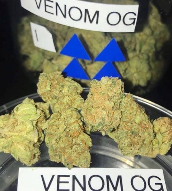 Venom OG strain for sale