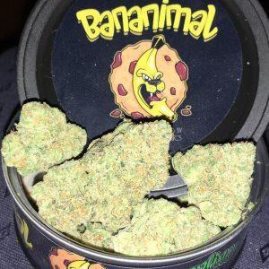 Buy Bananimal strain Online